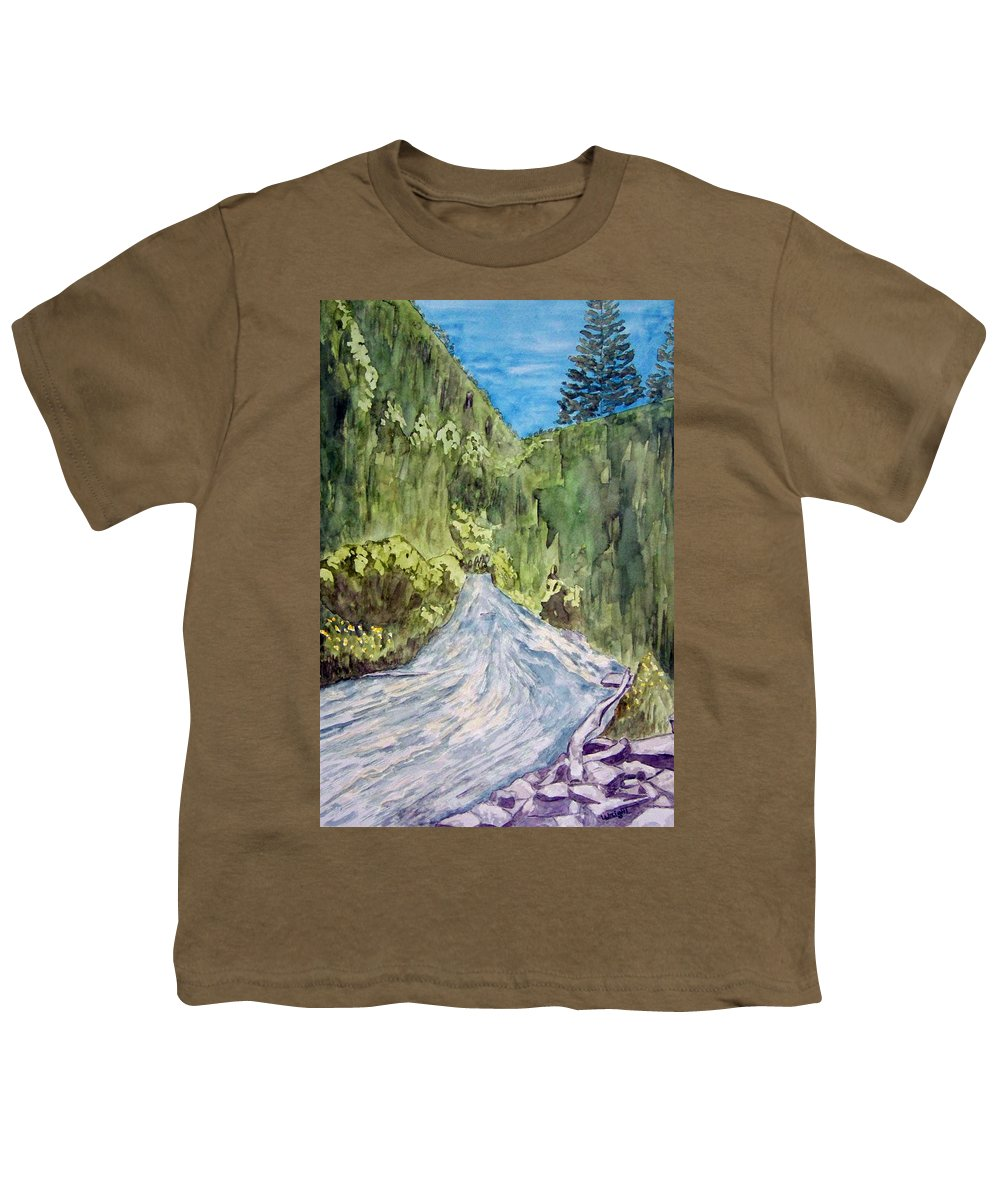 New Mexico Art Youth T-Shirt featuring the painting New Mexico Canyon Impression by Larry Wright
