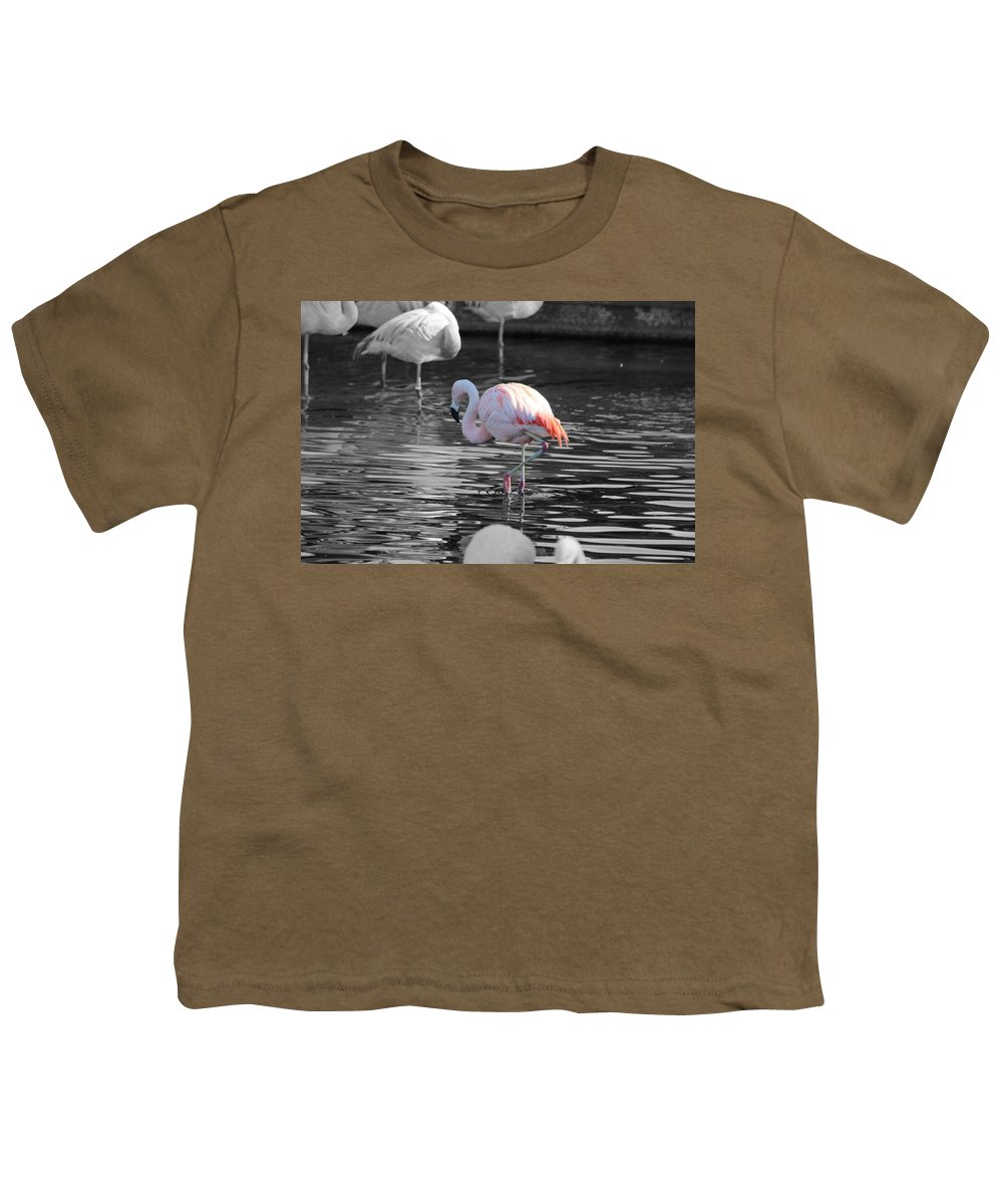 Palm Desert California Youth T-Shirt featuring the photograph Pinky by Colleen Cornelius