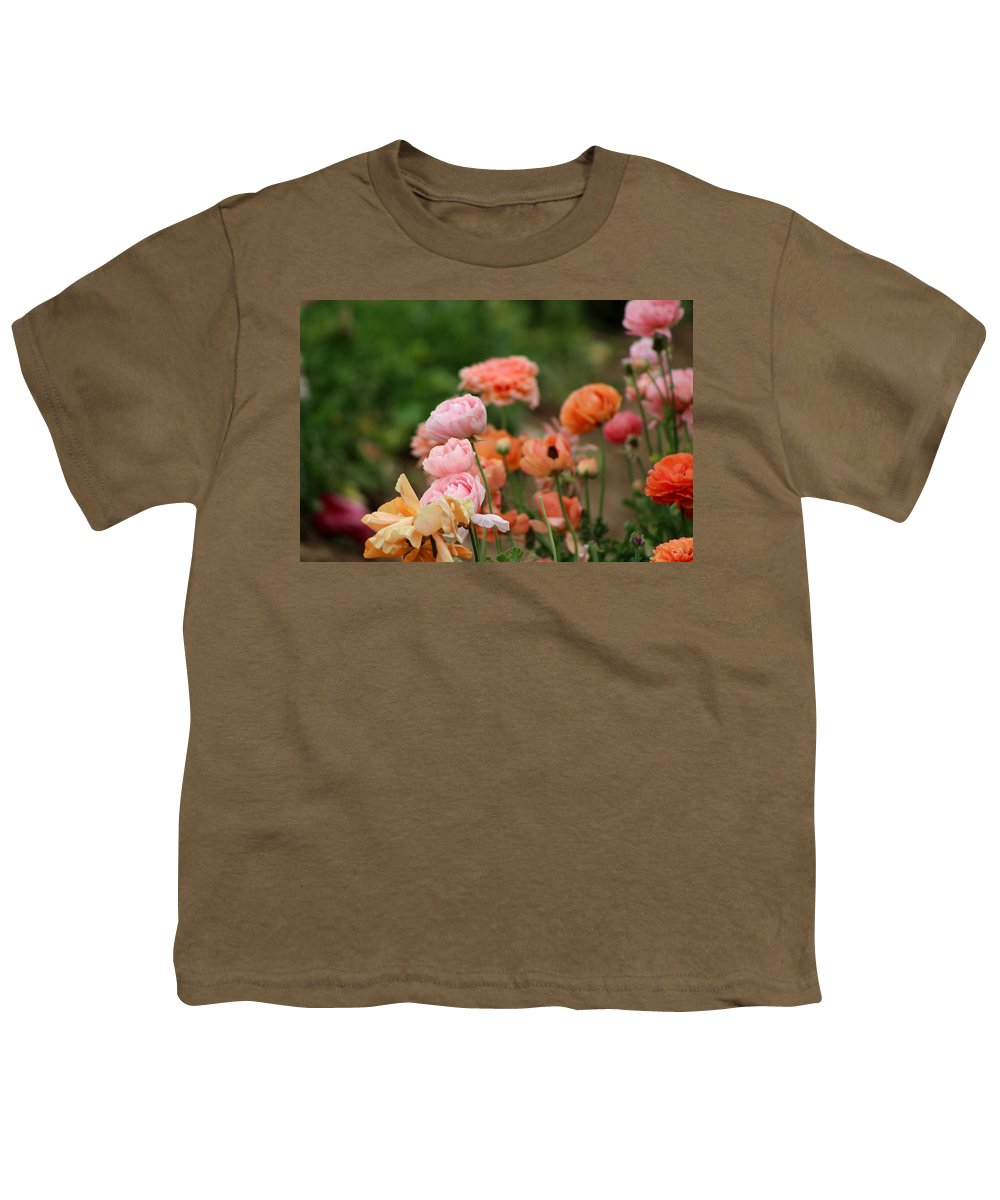 Powder Pink Ranunculus Youth T-Shirt featuring the photograph Powder Pink and Salmon Ranunculus by Colleen Cornelius
