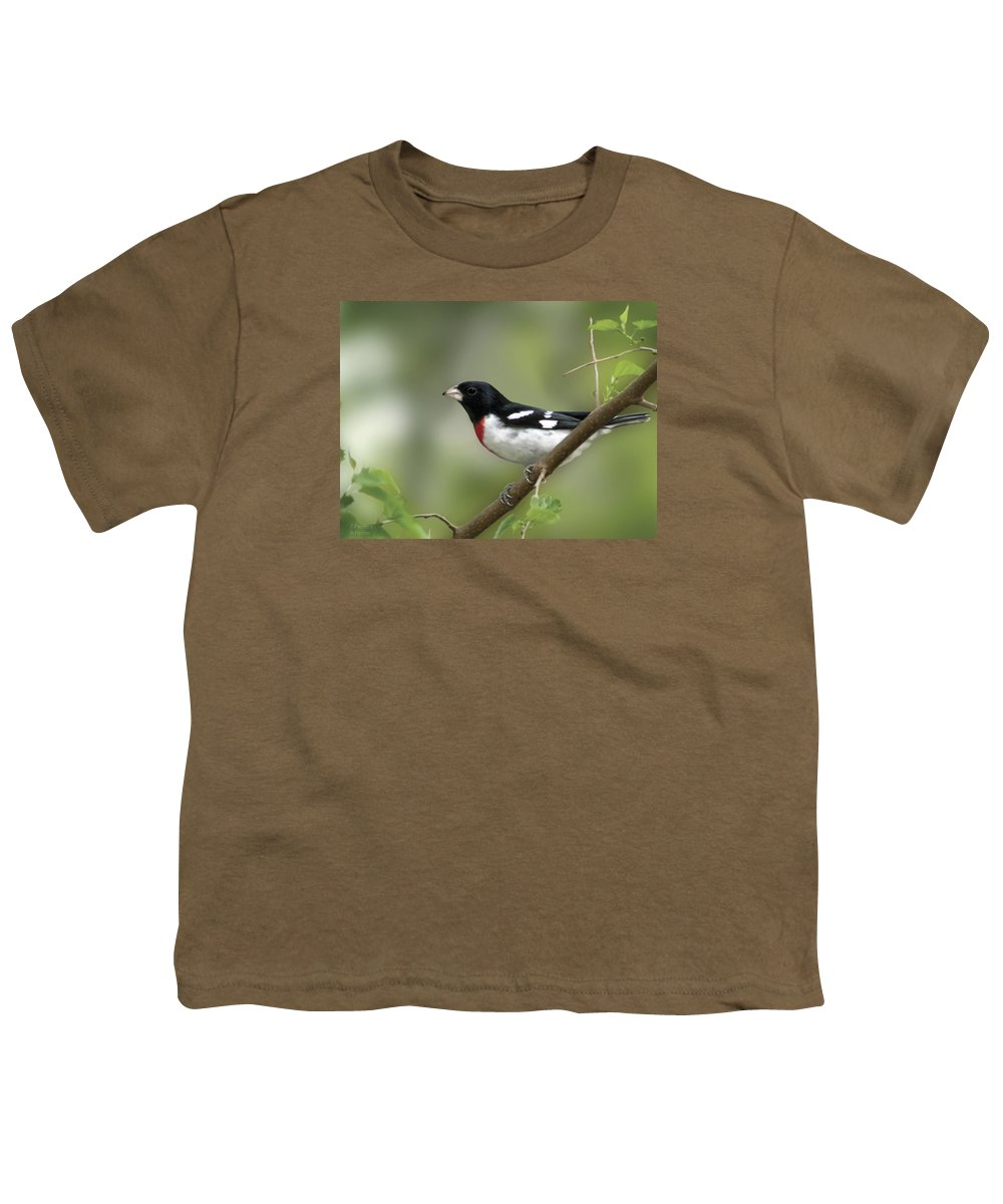 Nature Youth T-Shirt featuring the digital art Rose Breasted Grosbeak by Barbara Hymer
