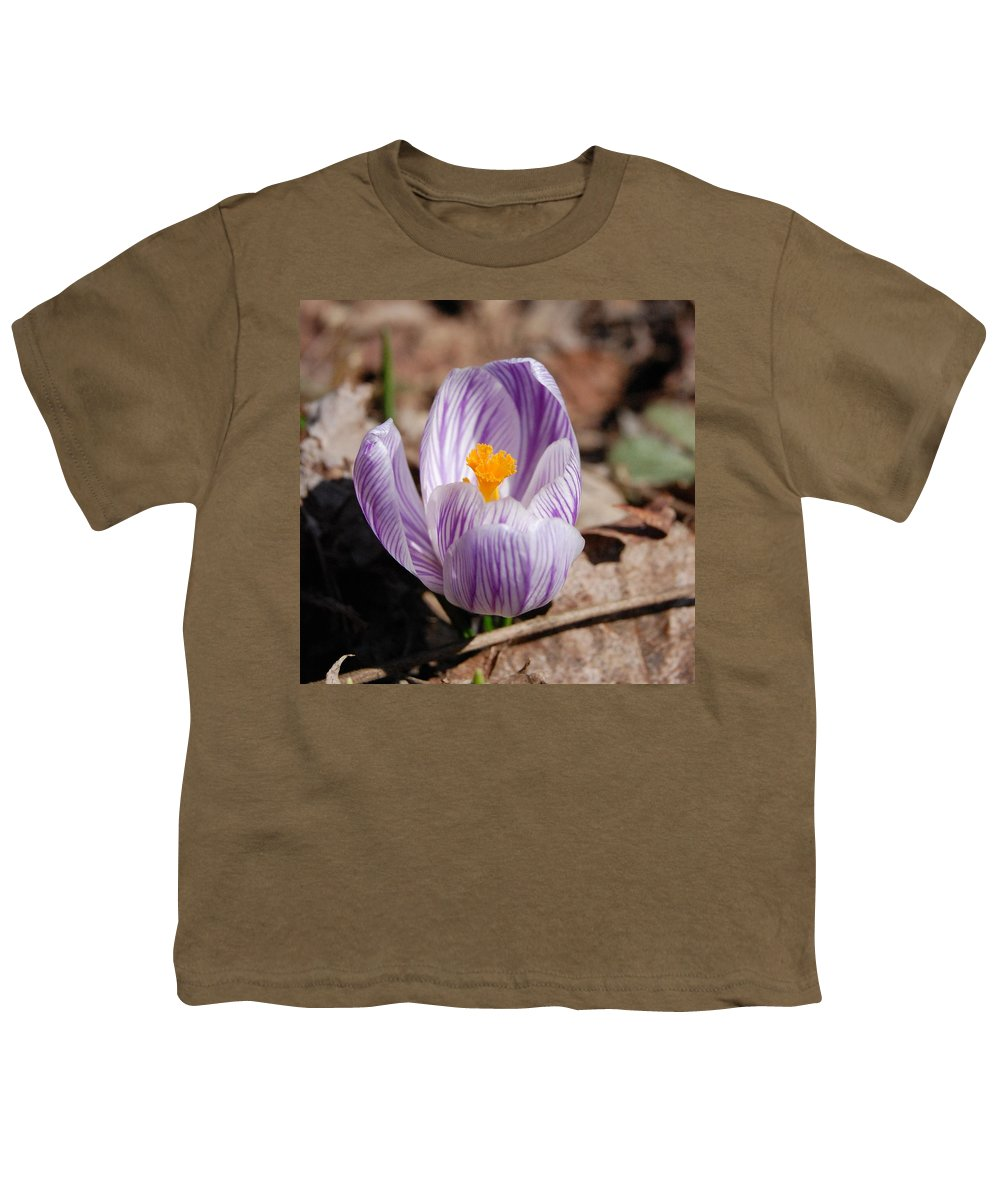 Digital Photography Youth T-Shirt featuring the photograph Striped Crocus by David Lane