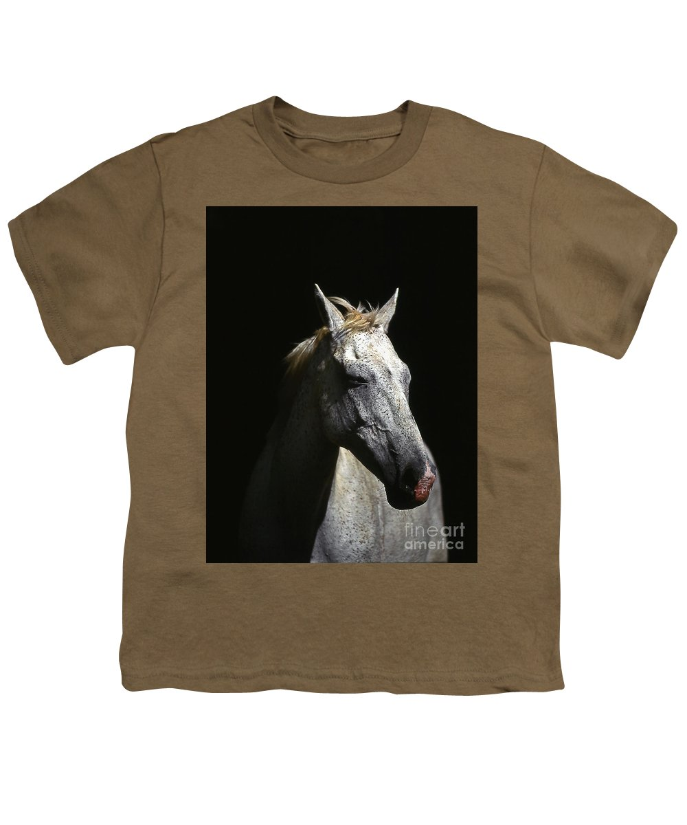 Horse Youth T-Shirt featuring the photograph Sundance by Jim Cazel