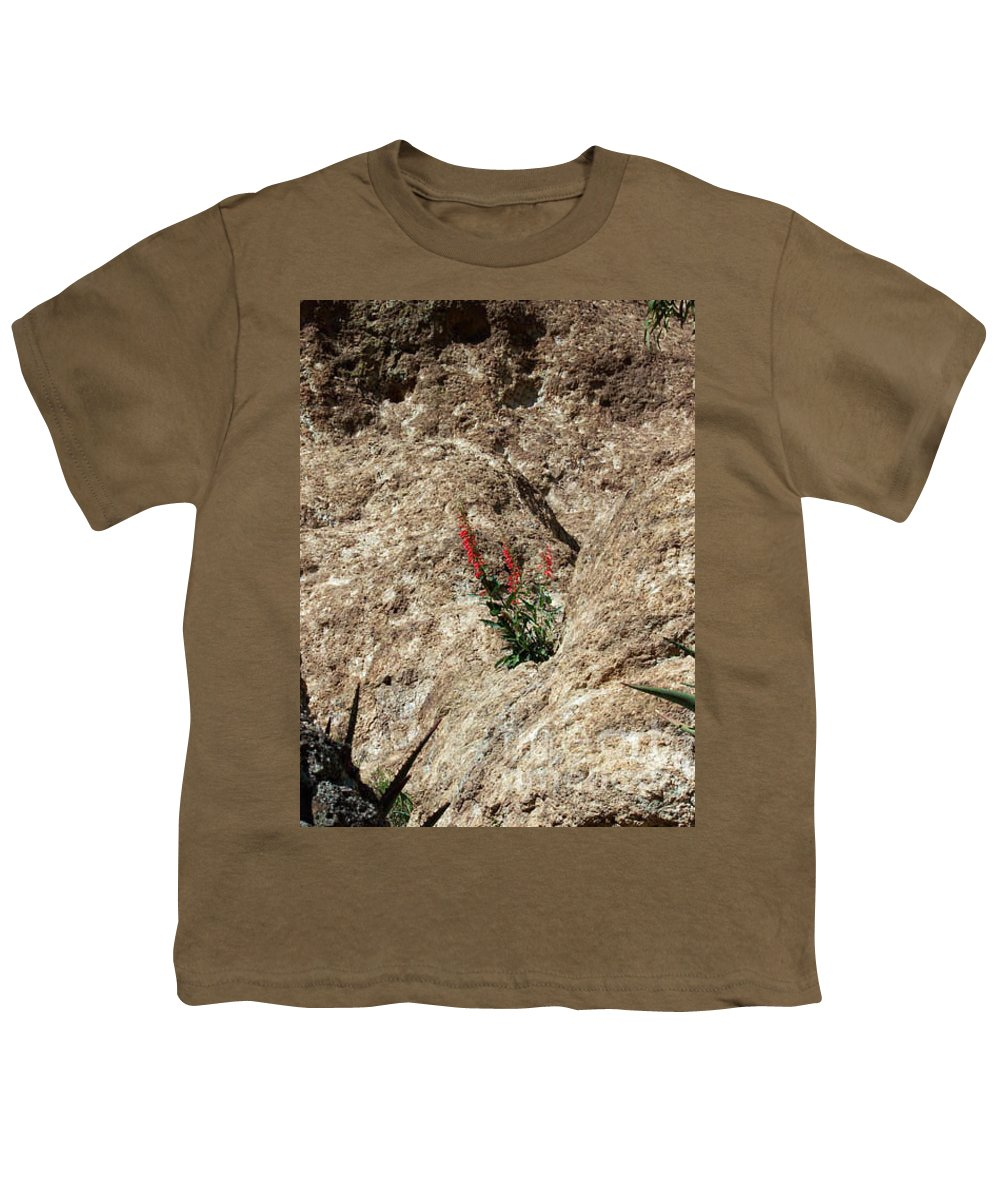 Wildflowers; Flowers Youth T-Shirt featuring the photograph Tenacity by Kathy McClure