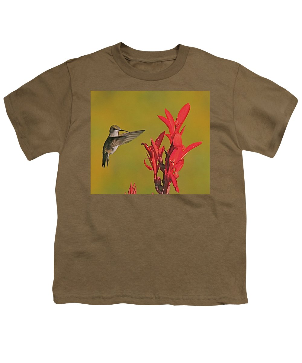 Humming Bird Youth T-Shirt featuring the photograph The Hummer by Robert Pearson
