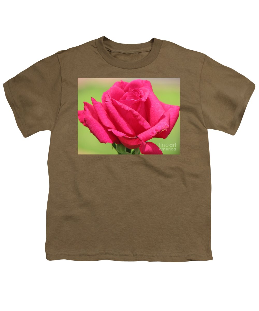 Roses Youth T-Shirt featuring the photograph The Rose by Amanda Barcon