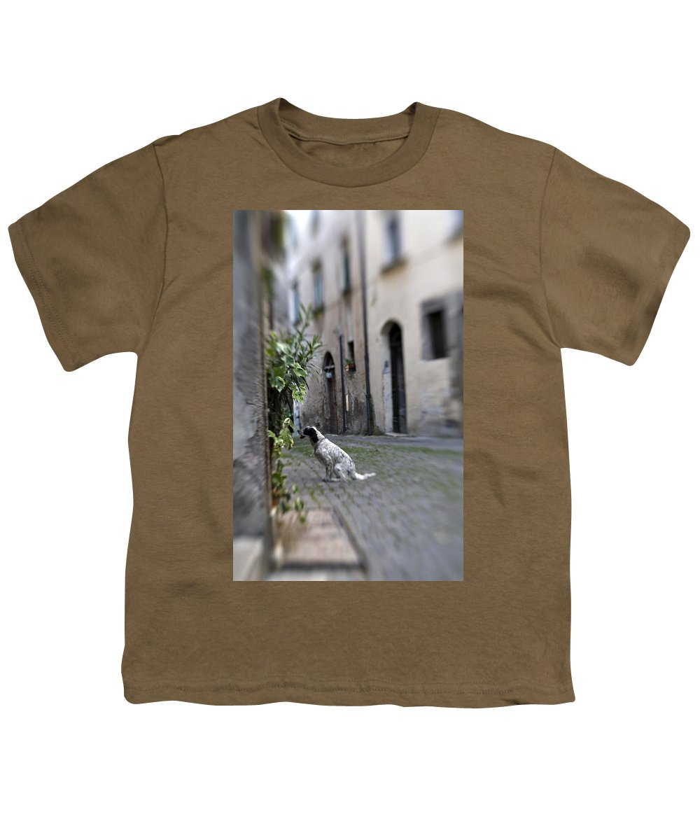 Dog Youth T-Shirt featuring the photograph Waiting by Marilyn Hunt