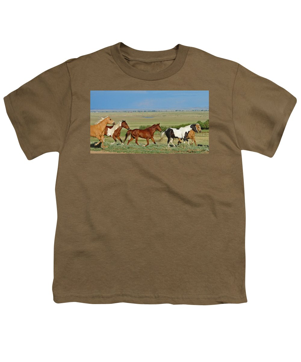 Herd Youth T-Shirt featuring the photograph Wild Horses Wyoming by Heather Coen
