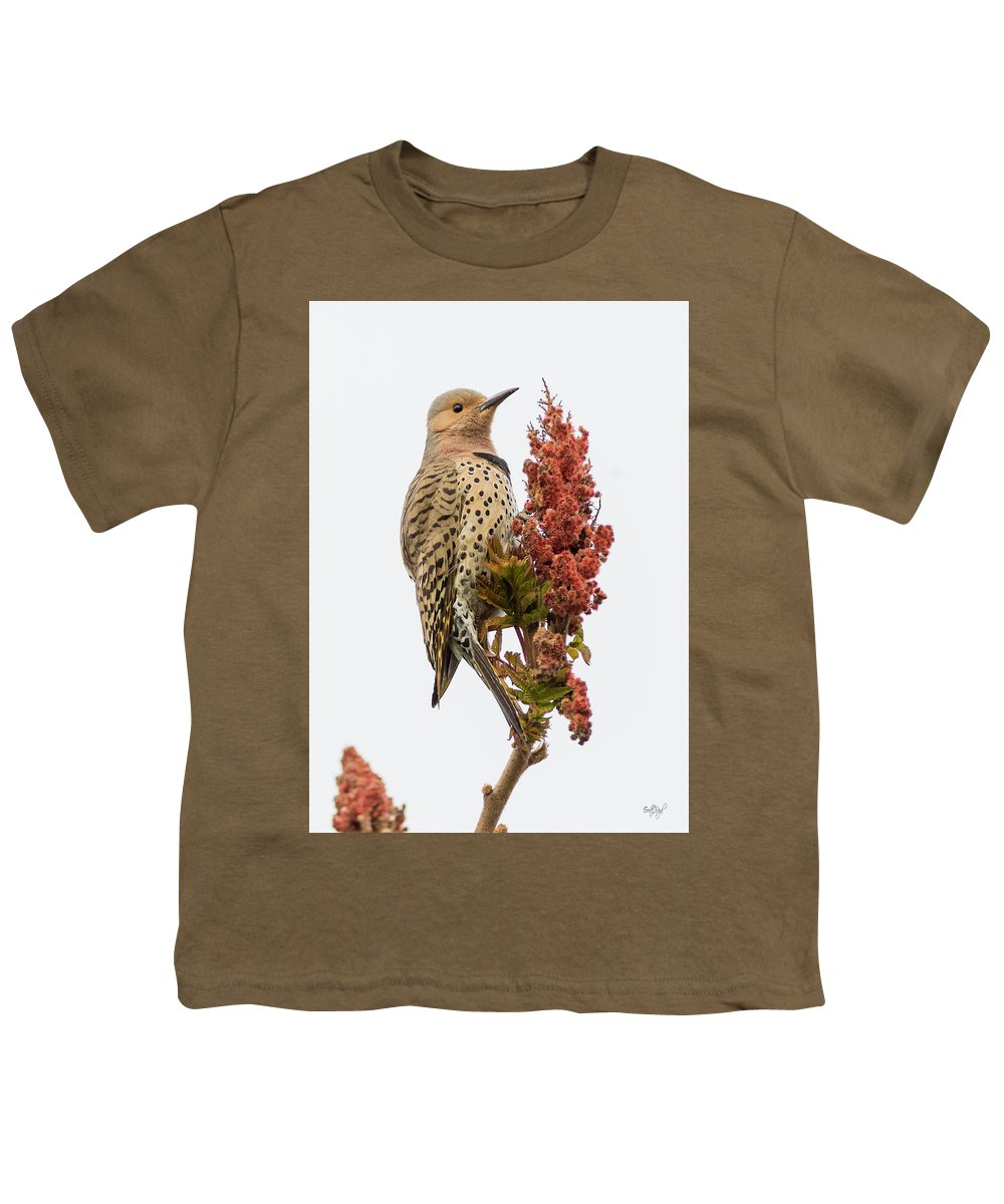 Northern Flicker Youth T-Shirts