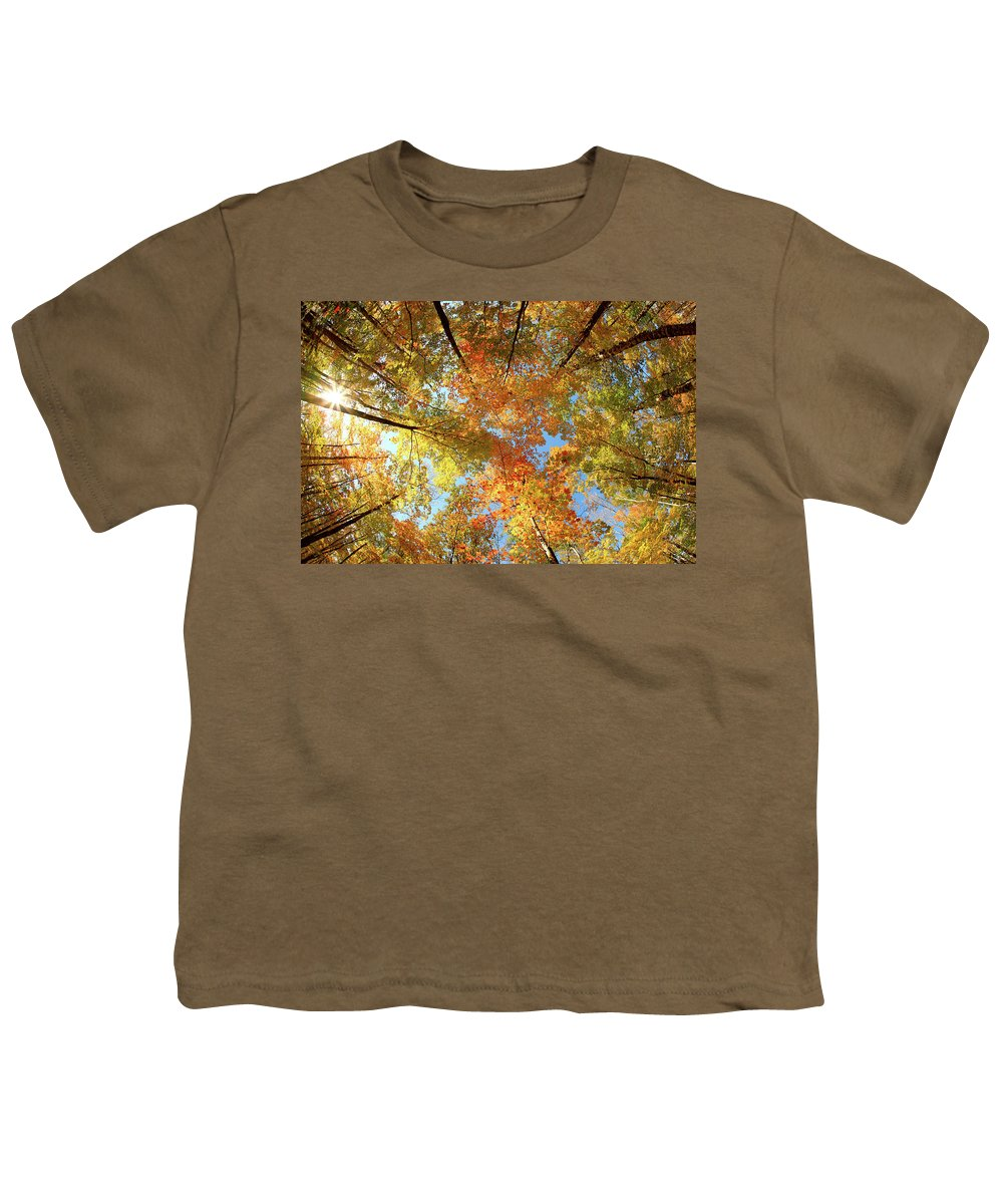 Canopy Youth T-Shirt featuring the photograph Langlade County Canopy by Todd Klassy