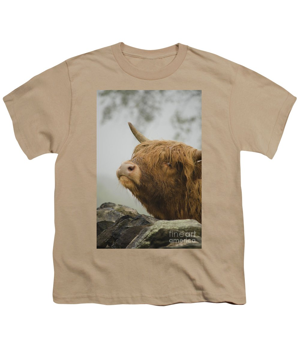 Linsey Williams Youth T-Shirt featuring the photograph Majestic Highland Cow by Linsey Williams