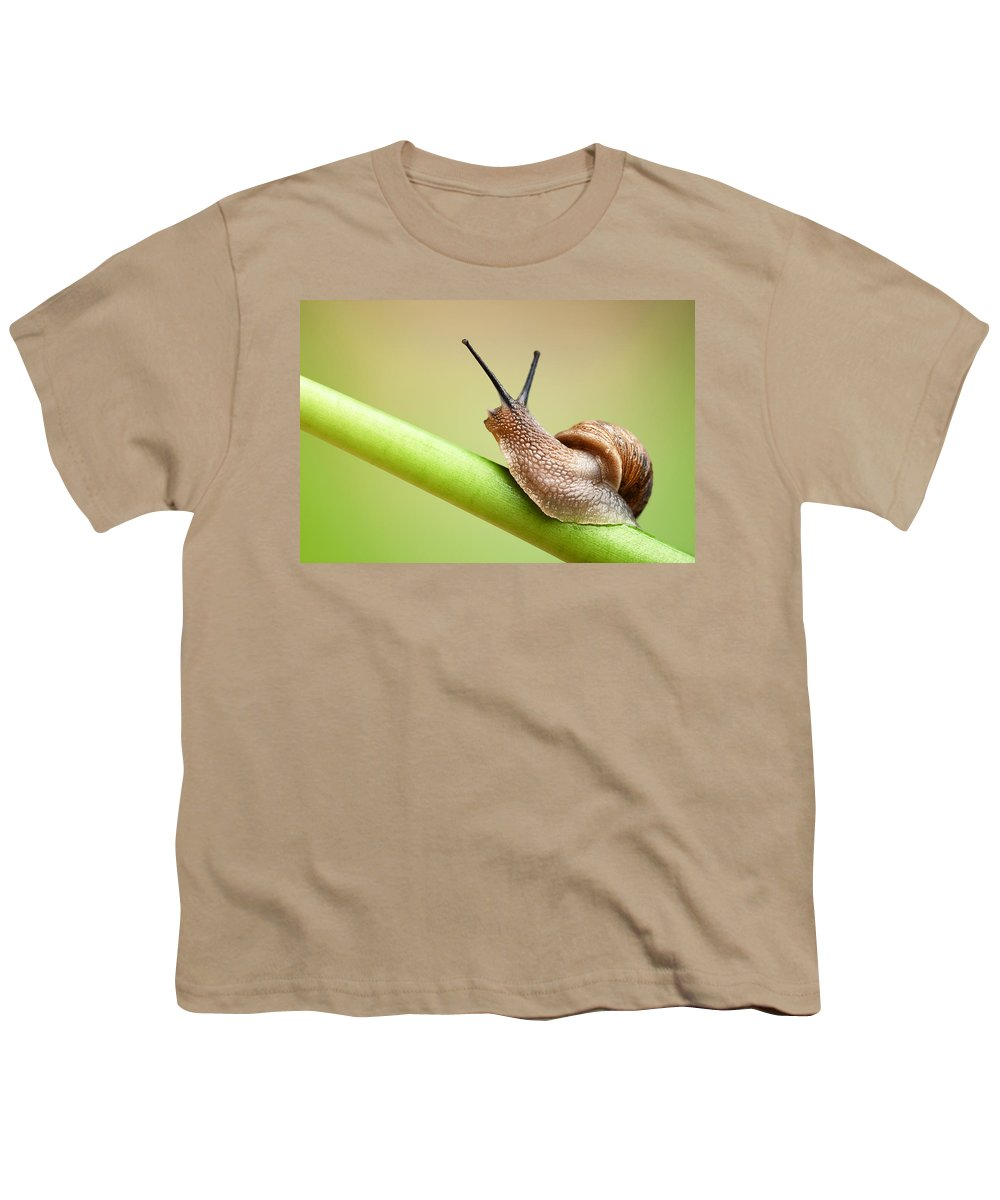 Pest Youth T-Shirts
