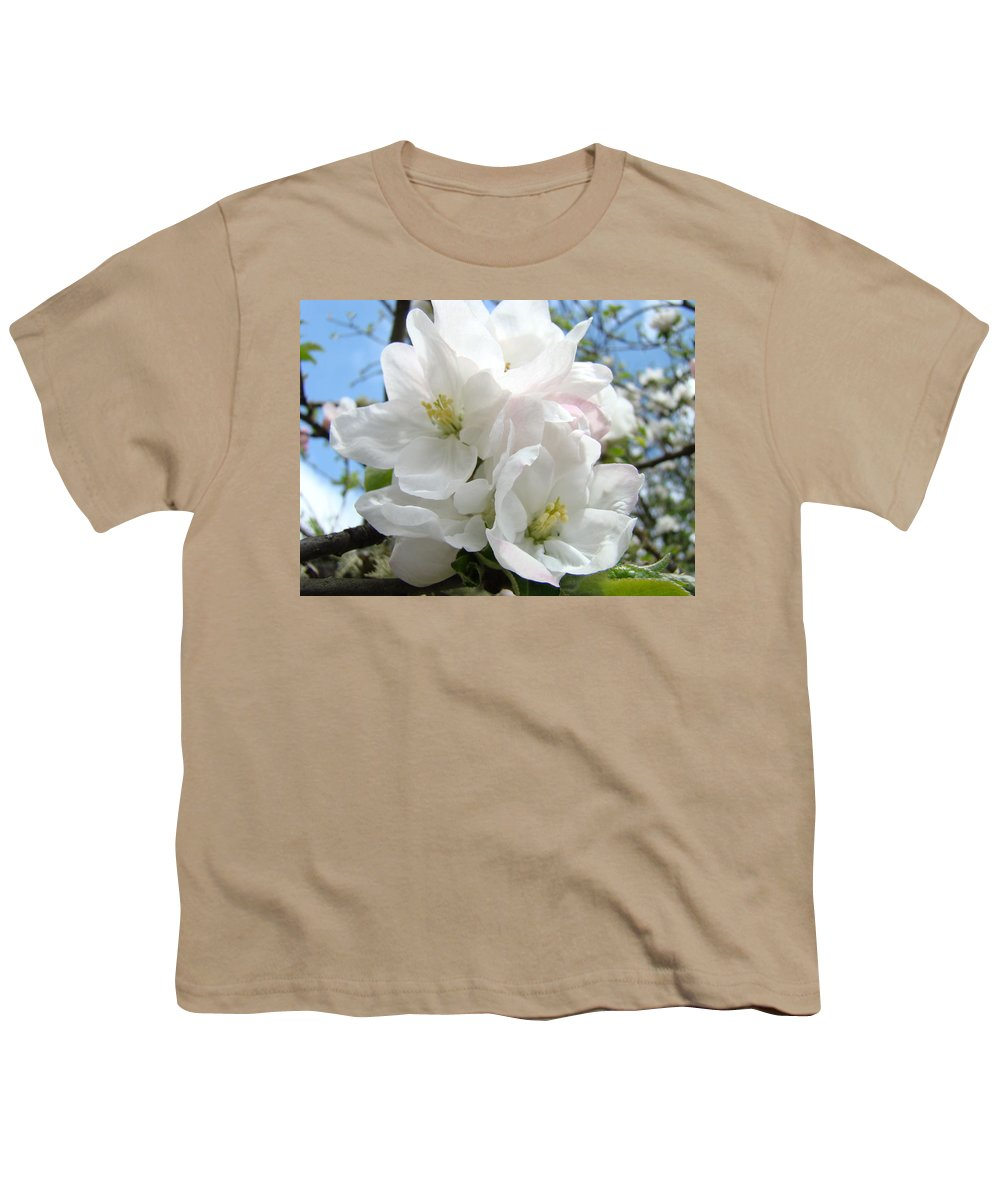 �blossoms Artwork� Youth T-Shirt featuring the photograph Apple Blossoms Art Prints Giclee 48 Spring Apple Tree Blossoms Blue Sky Macro Flowers by Baslee Troutman