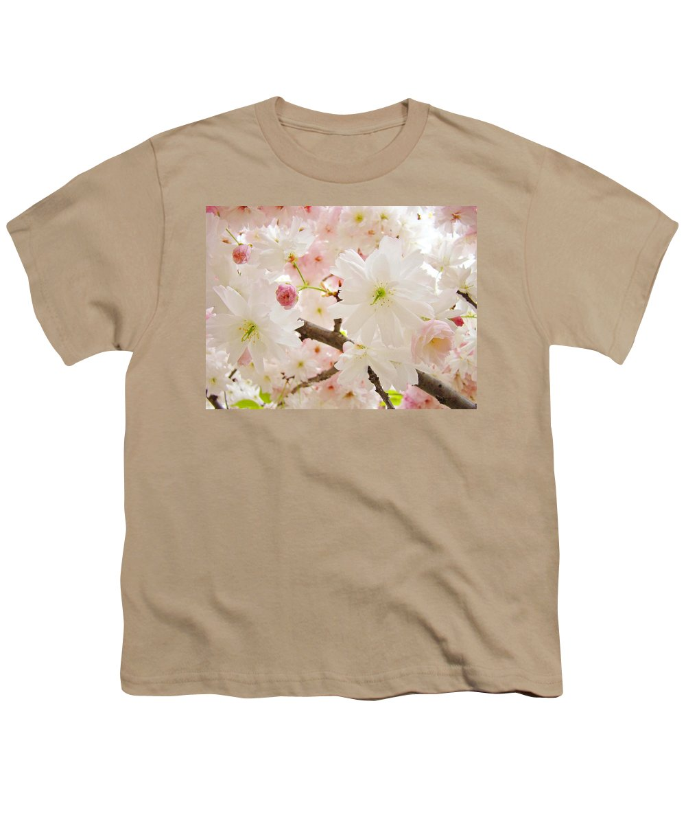 Nature Youth T-Shirt featuring the photograph Blossoms Art Print 53 Sunlit Pink Tree Blossoms Macro Springtime Blue Sky by Baslee Troutman