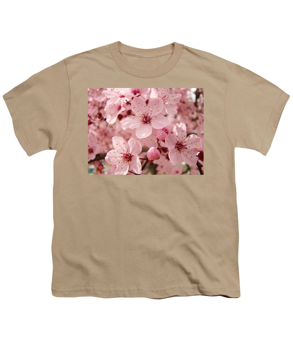 Nature Youth T-Shirt featuring the photograph Blossoms Art Prints 63 Pink Blossoms Spring Tree Blossoms by Baslee Troutman