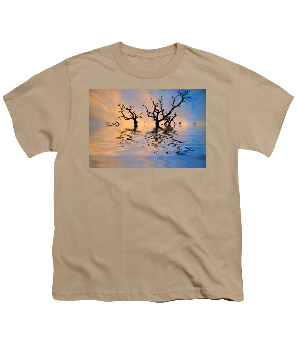 Original Art Youth T-Shirt featuring the photograph Slowly Sinking by Jerry McElroy