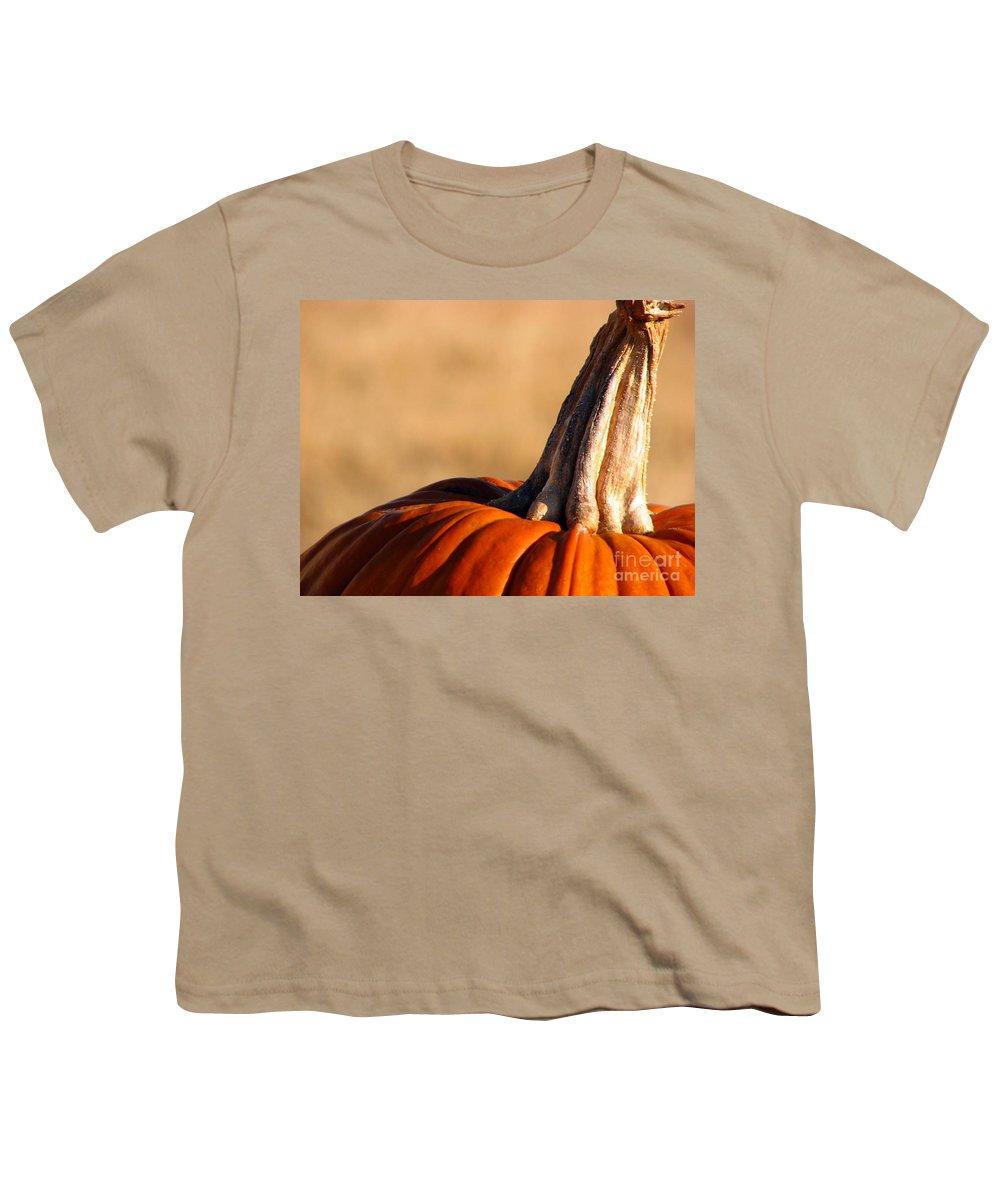 Pumpkins Youth T-Shirt featuring the photograph Pumpkin by Amanda Barcon