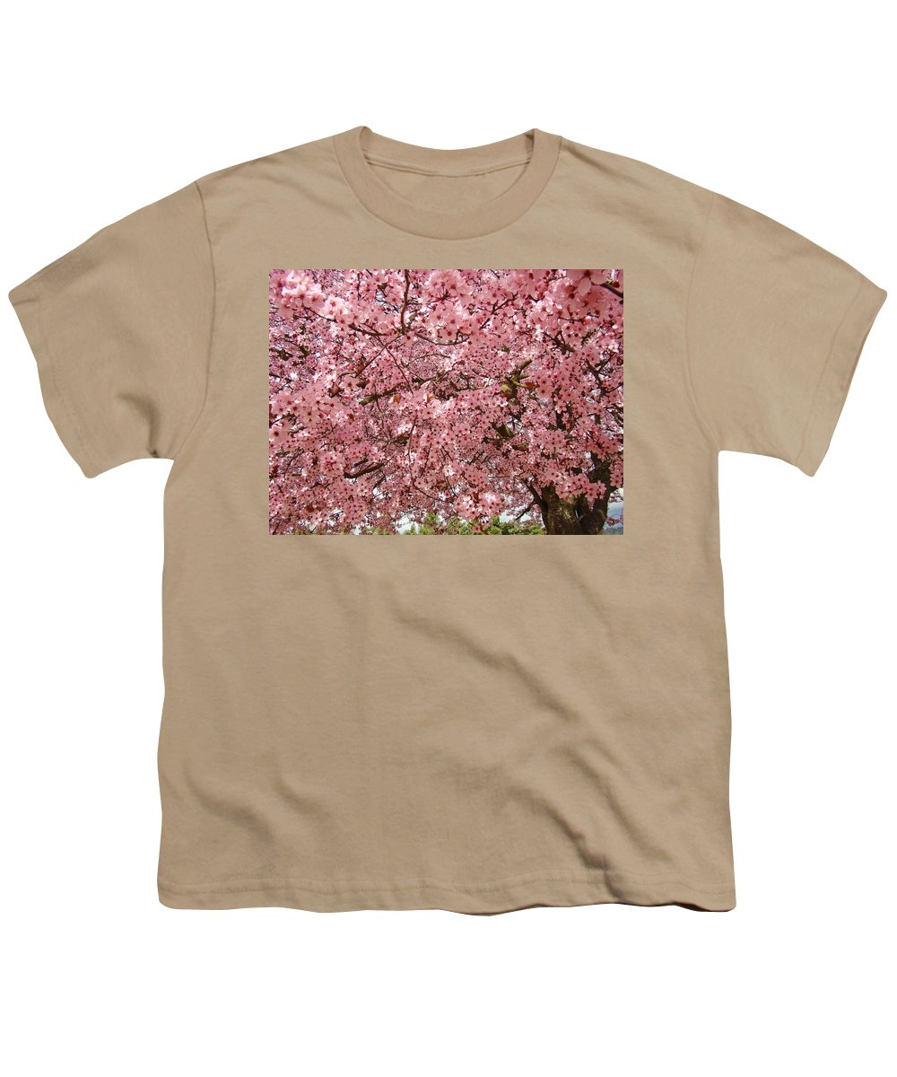 Tree Youth T-Shirt featuring the photograph Tree Blossoms Pink Blossoms Art Prints Giclee Flower Landscape Artwork by Baslee Troutman