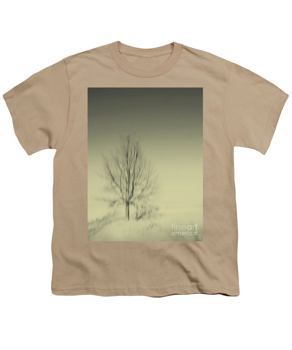 Dipasquale Youth T-Shirt featuring the photograph When You Wake Up I Will Have Gone by Dana DiPasquale
