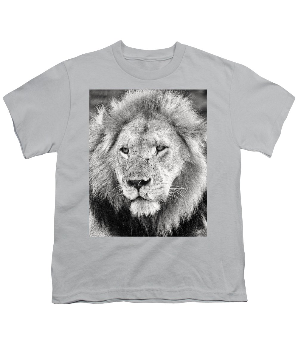 3scape Photos Youth T-Shirt featuring the photograph Lion King by Adam Romanowicz