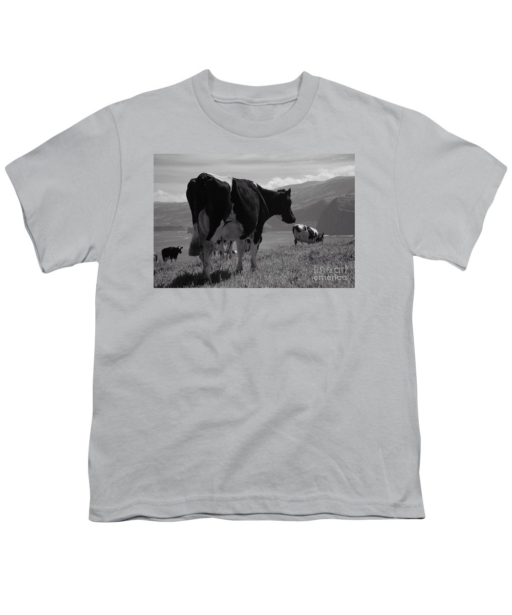Azoren Youth T-Shirt featuring the photograph Cows by Gaspar Avila