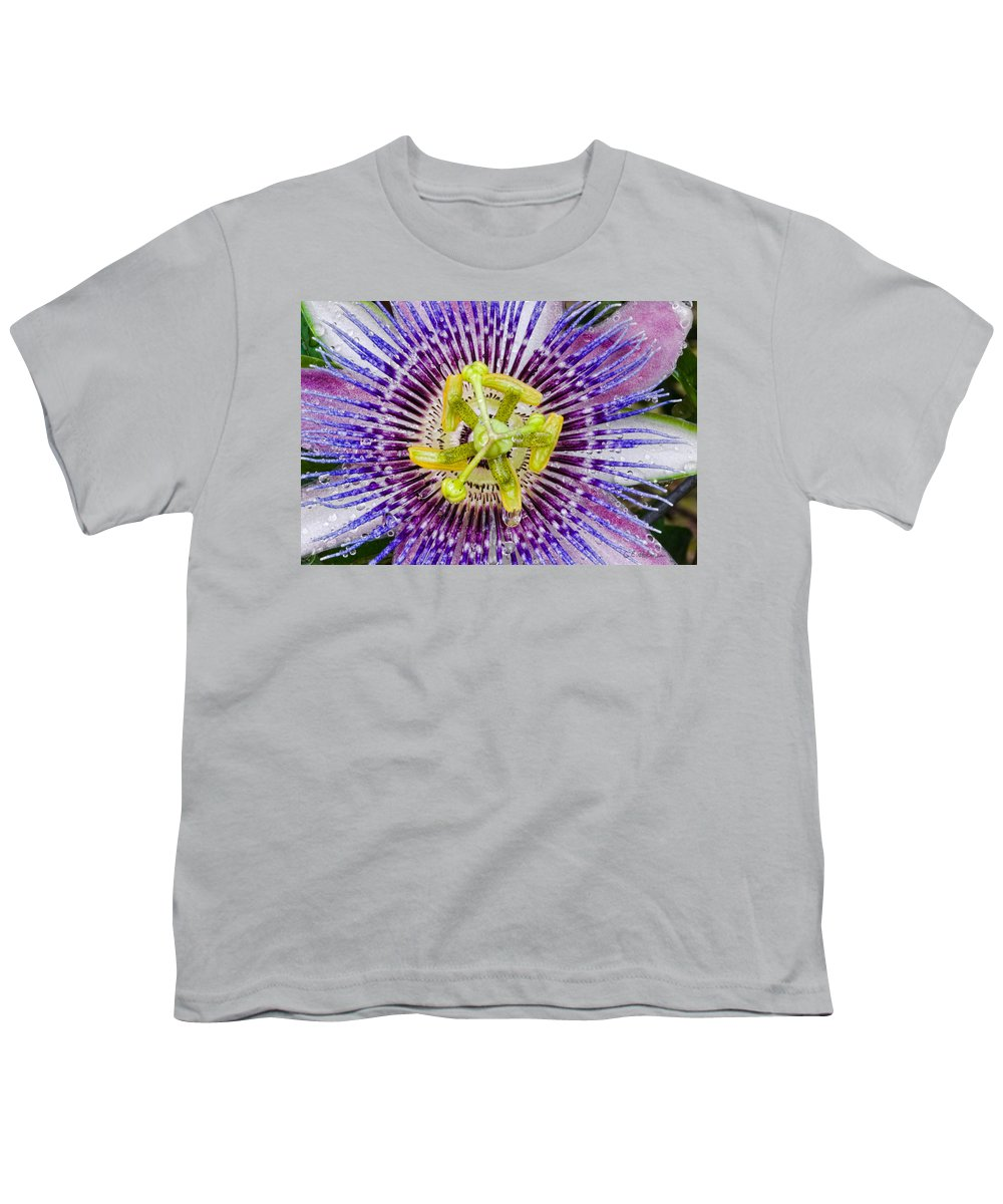 Passion Youth T-Shirt featuring the photograph Purple Radial by Christopher Holmes