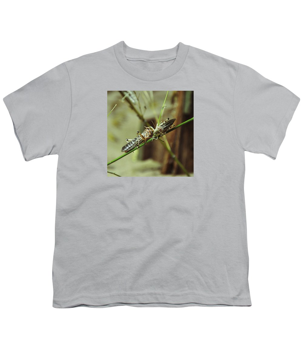 Locusts Youth T-Shirt featuring the photograph Two Locusts by Caroline Reyes-Loughrey