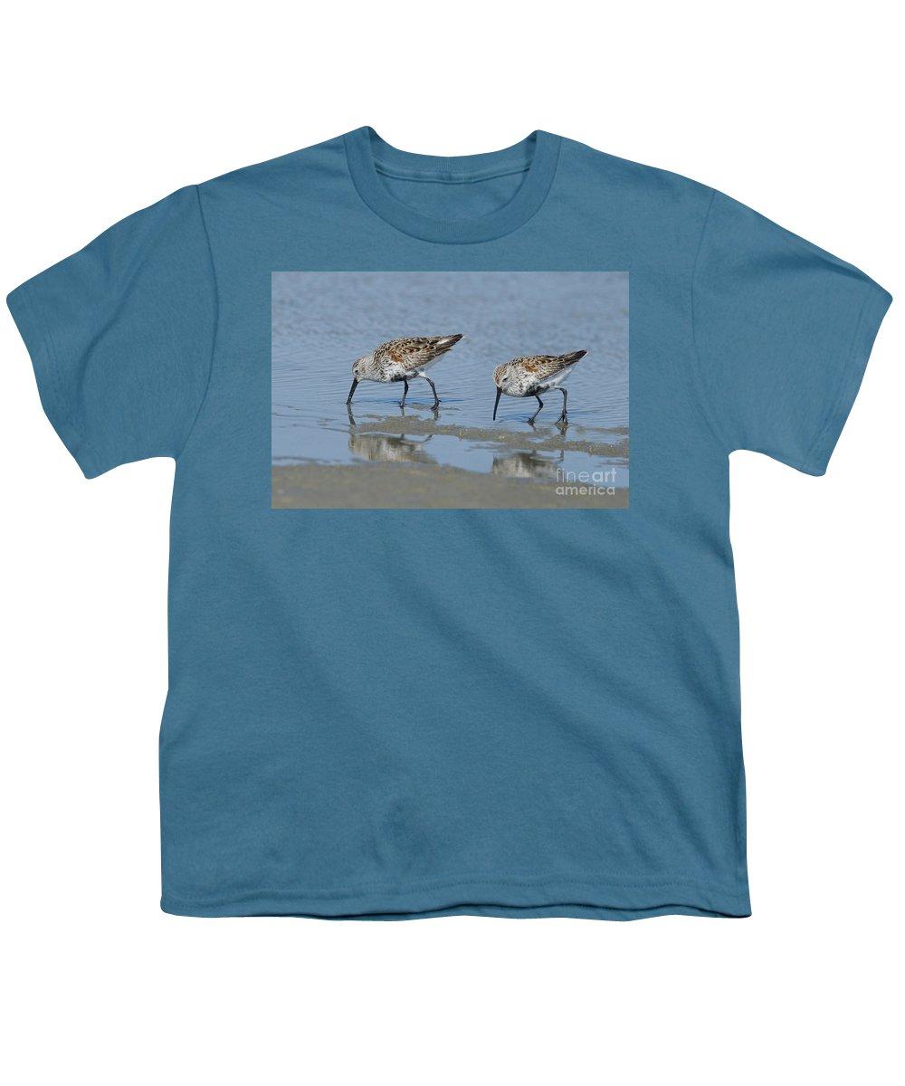 Dunlin Youth T-Shirts