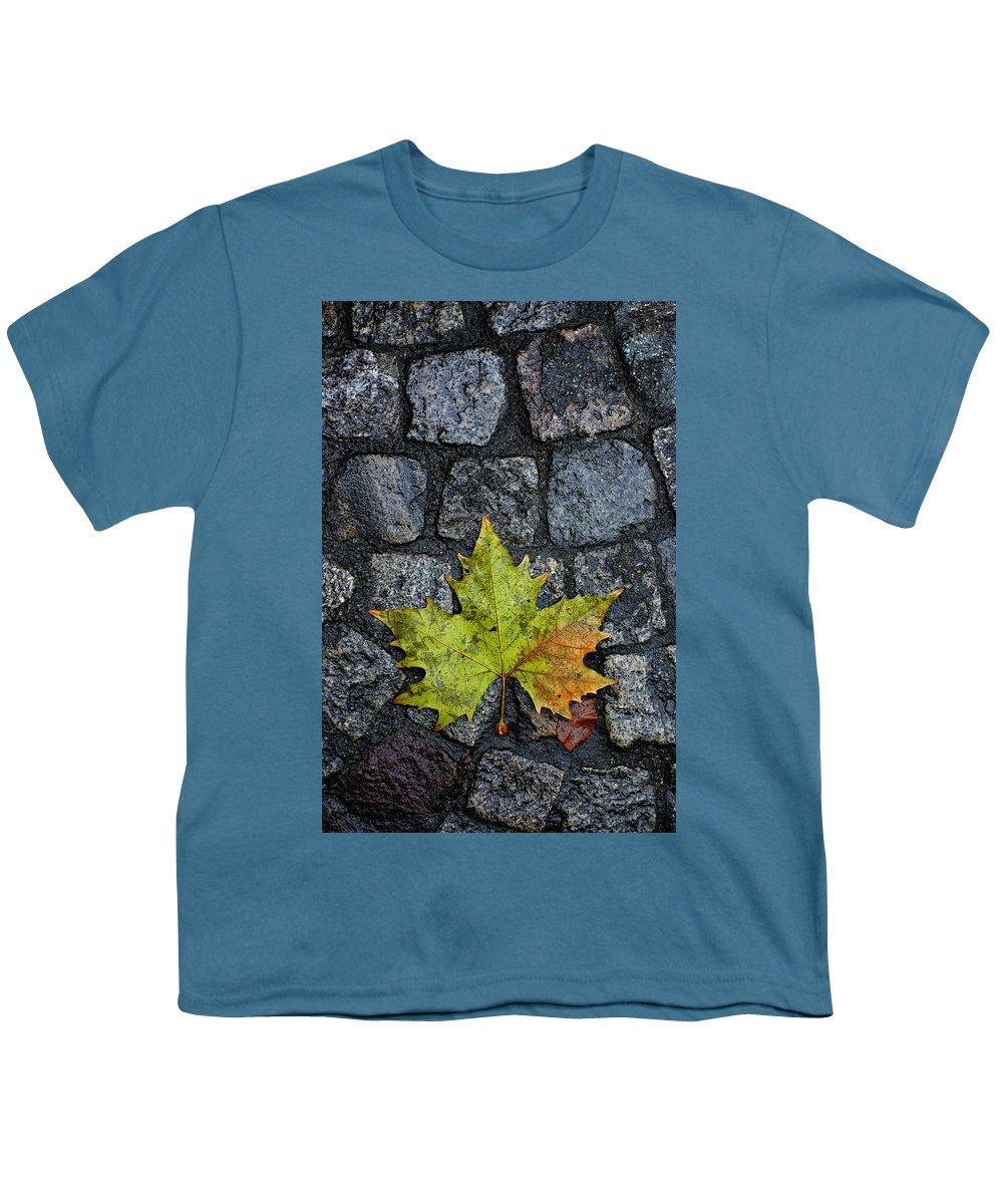 Nature Youth T-Shirt featuring the photograph Deville by Skip Hunt
