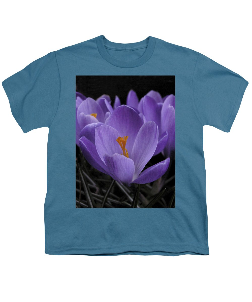 Flowers Youth T-Shirt featuring the photograph Flower Crocus by Nancy Griswold