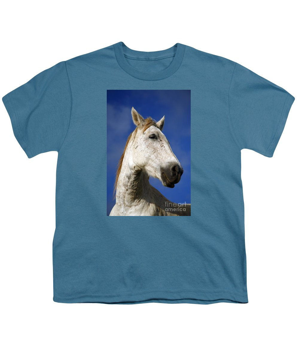 Animals Youth T-Shirt featuring the photograph Horse Portrait by Gaspar Avila