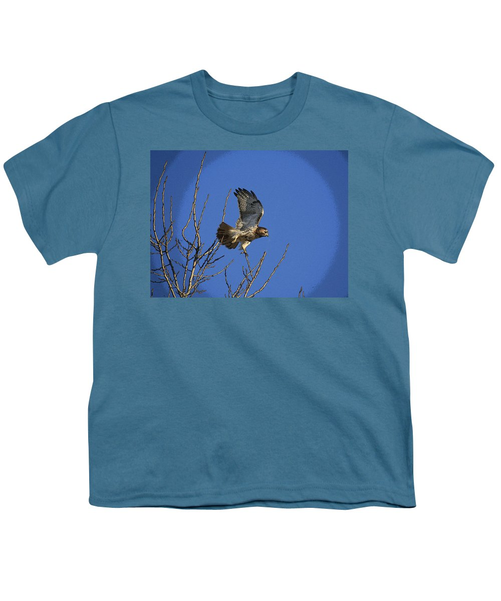 Hawk Youth T-Shirt featuring the photograph On The Move by Robert Pearson
