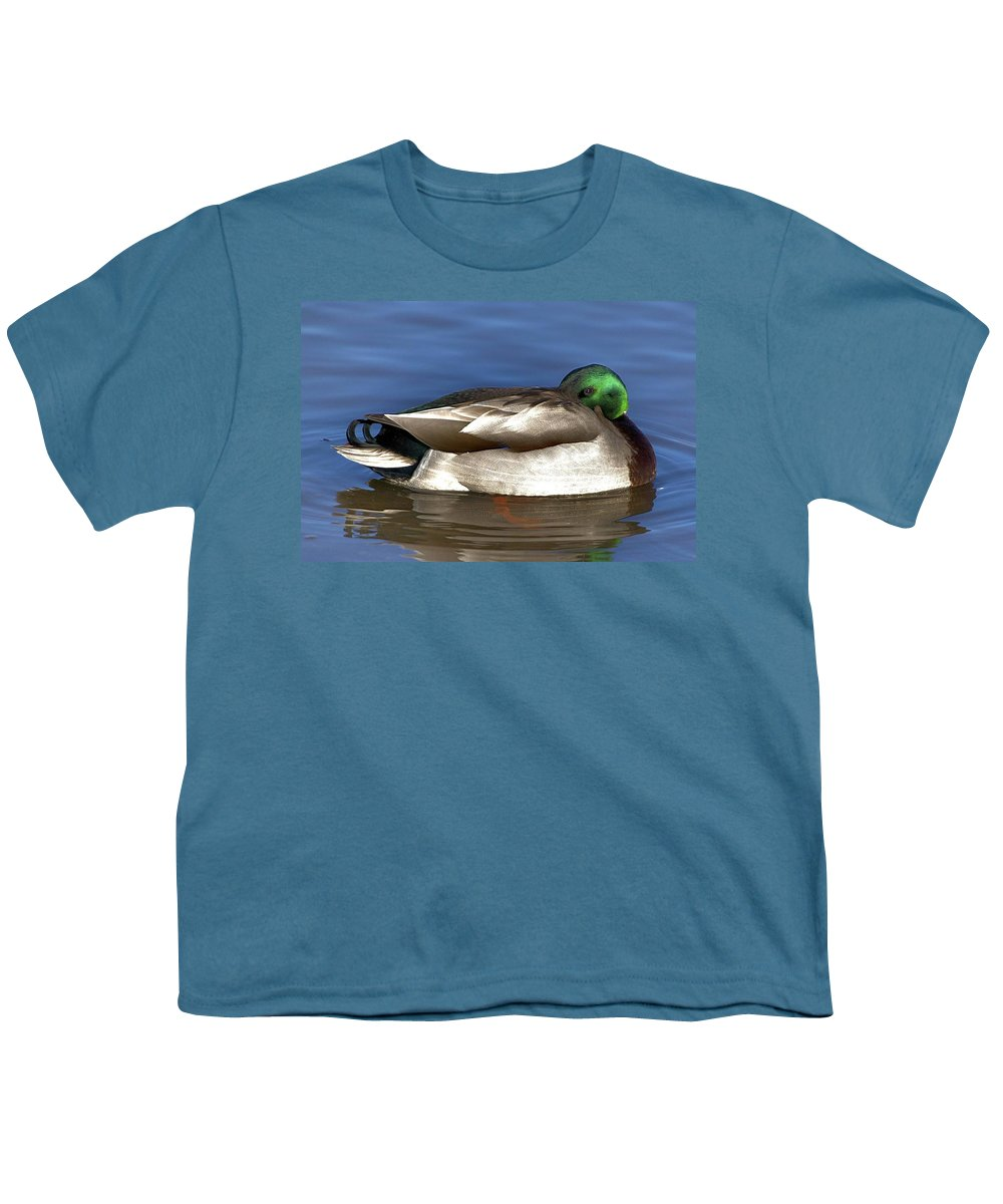 Duck Youth T-Shirt featuring the photograph Peek A Boo by Robert Pearson