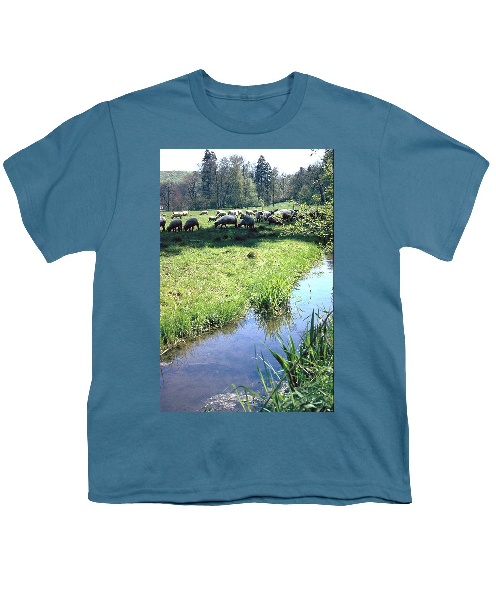 Sheep Youth T-Shirt featuring the photograph Sheep by Flavia Westerwelle