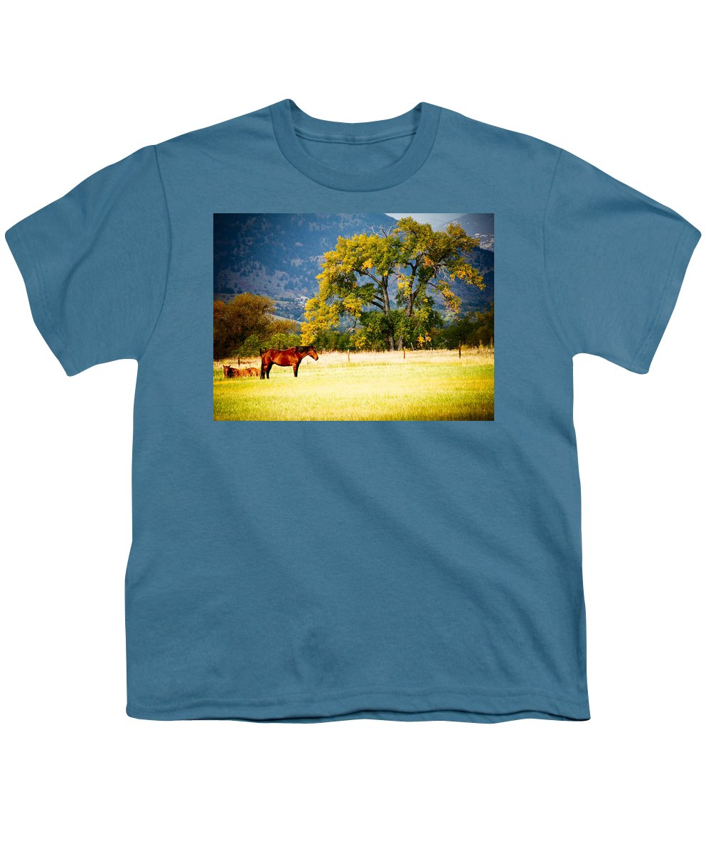 Animal Youth T-Shirt featuring the photograph Two Horses by Marilyn Hunt