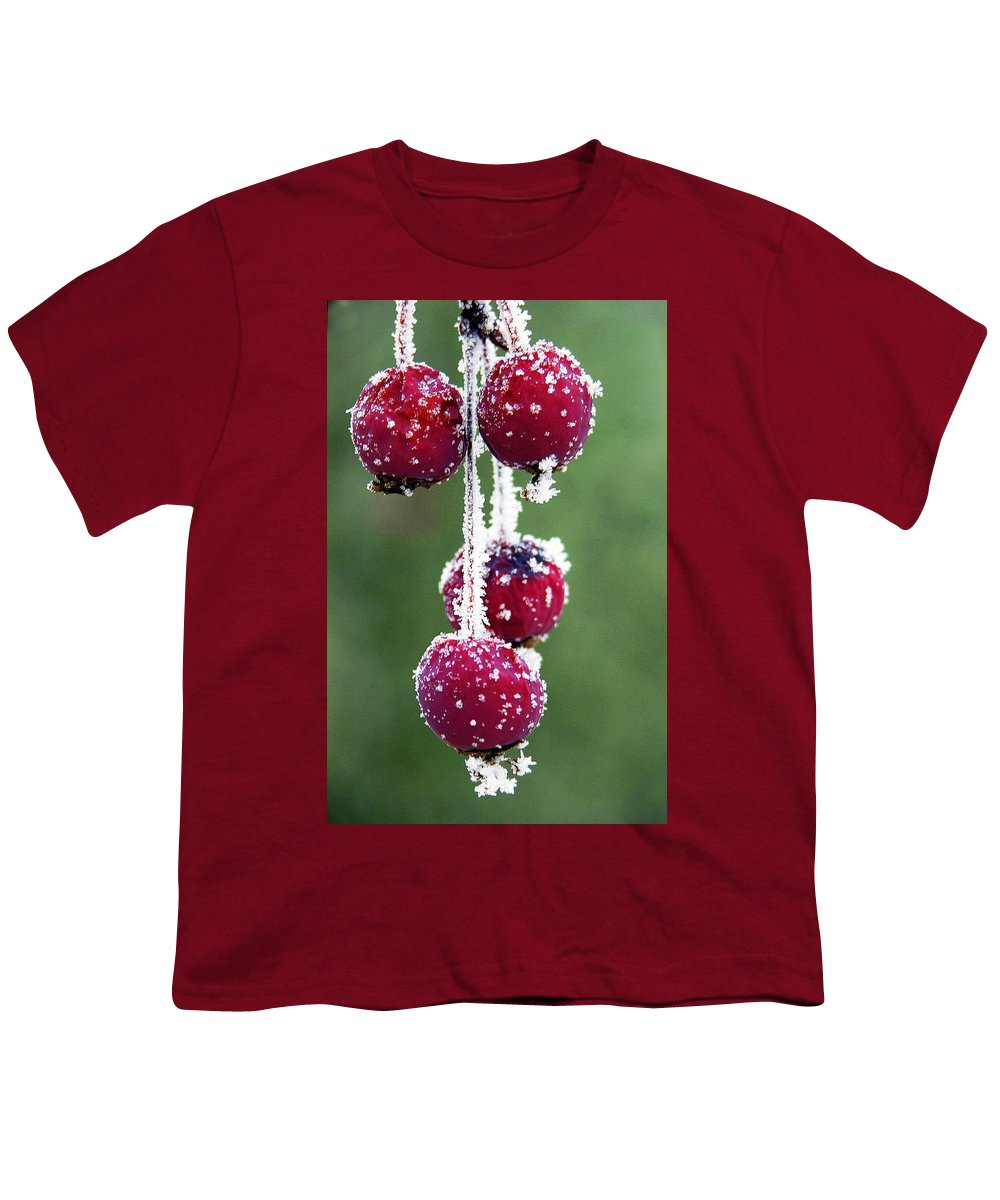 Berries Youth T-Shirt featuring the photograph Seasonal Colors by Marilyn Hunt