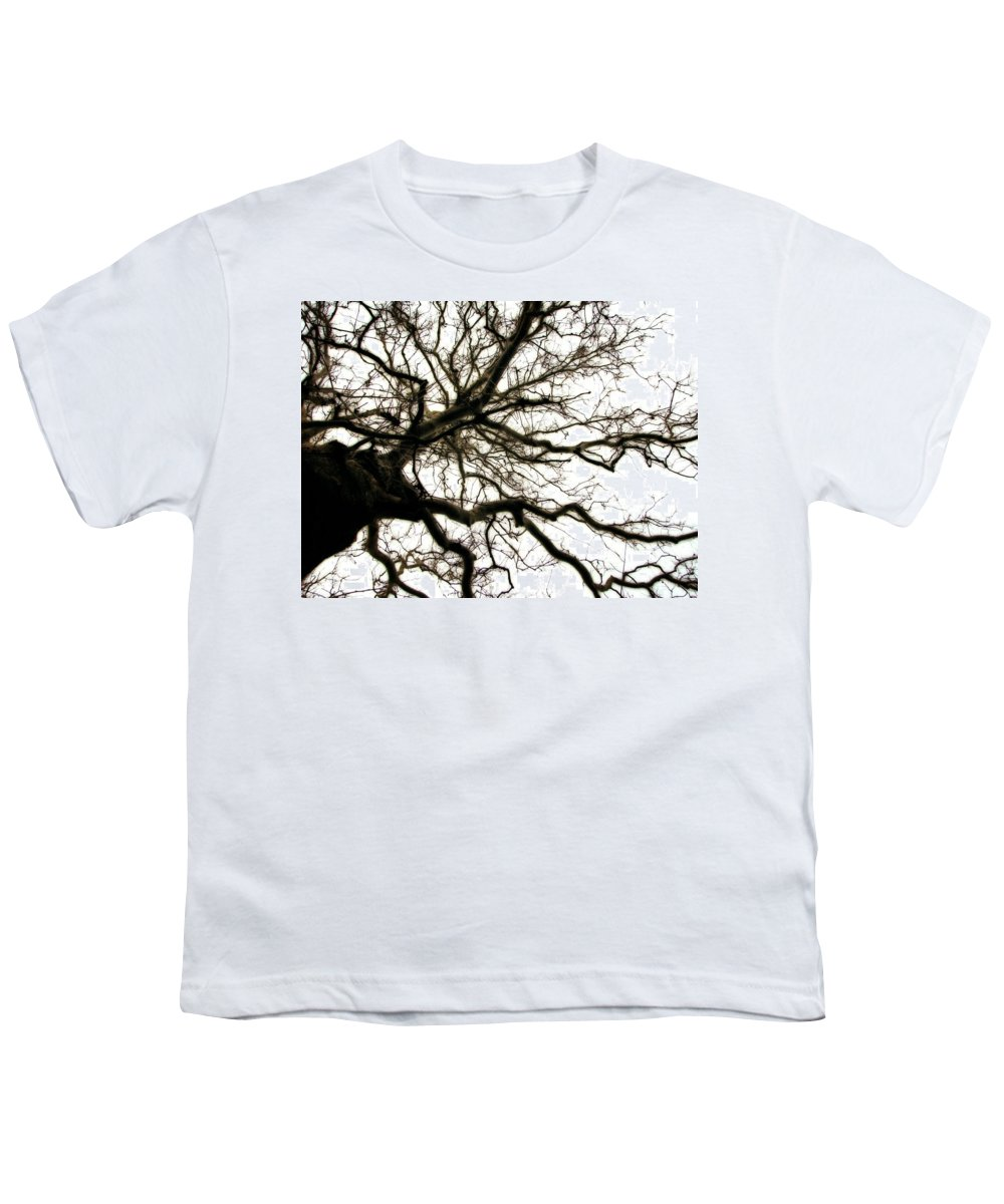 Branches Youth T-Shirt featuring the photograph Branches by Michelle Calkins