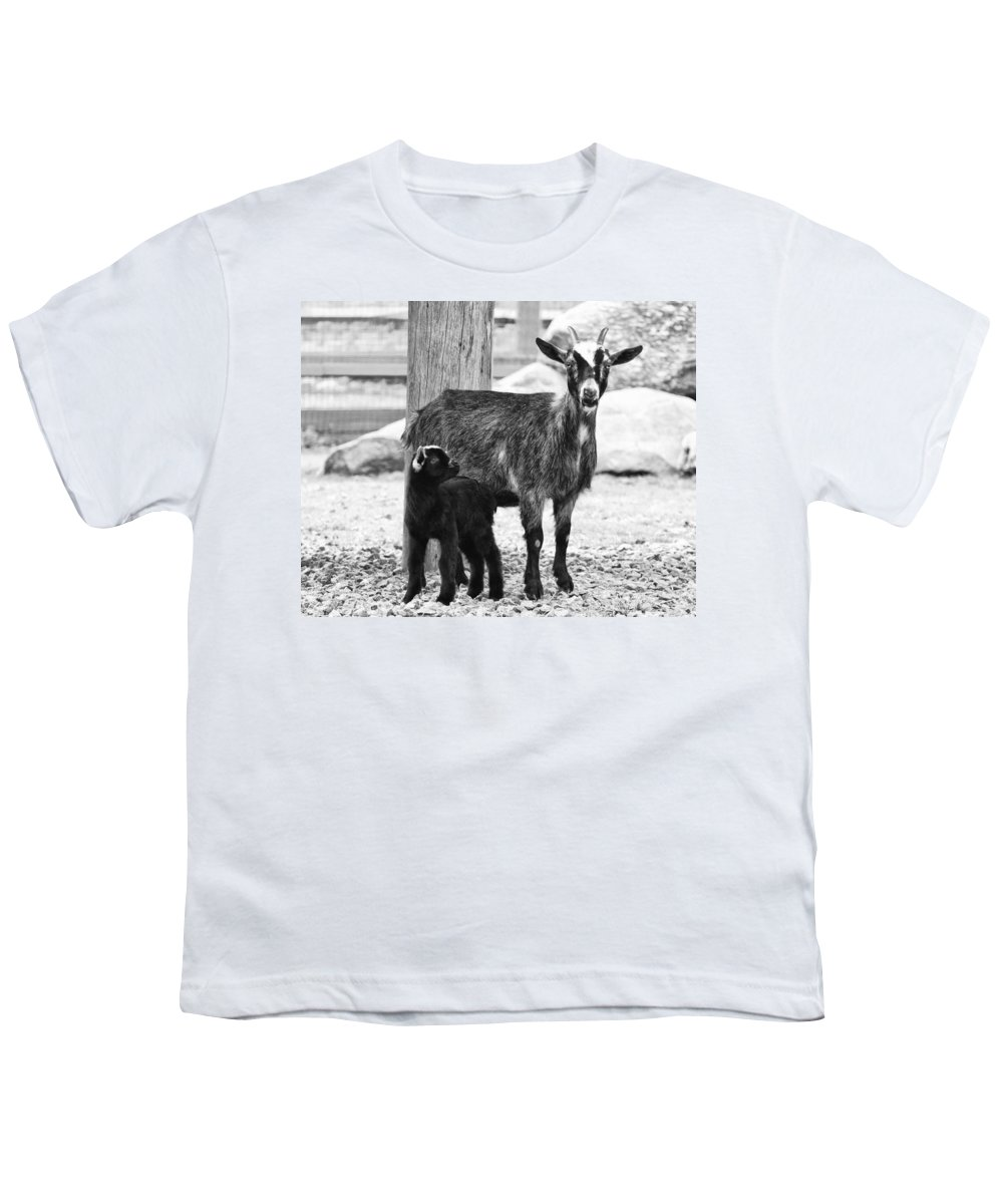 Goat Youth T-Shirt featuring the photograph Goat Baby And Mother by Stephanie McDowell