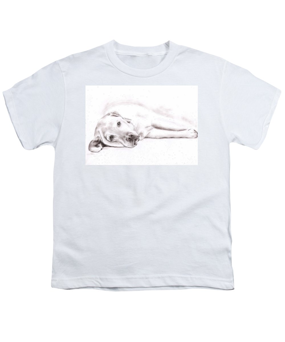 Dog Youth T-Shirt featuring the drawing Tired Labrador by Nicole Zeug