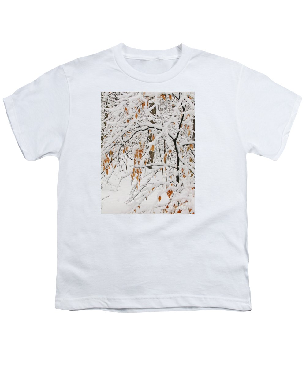 Winter Youth T-Shirt featuring the photograph Winter Branches by Ann Horn