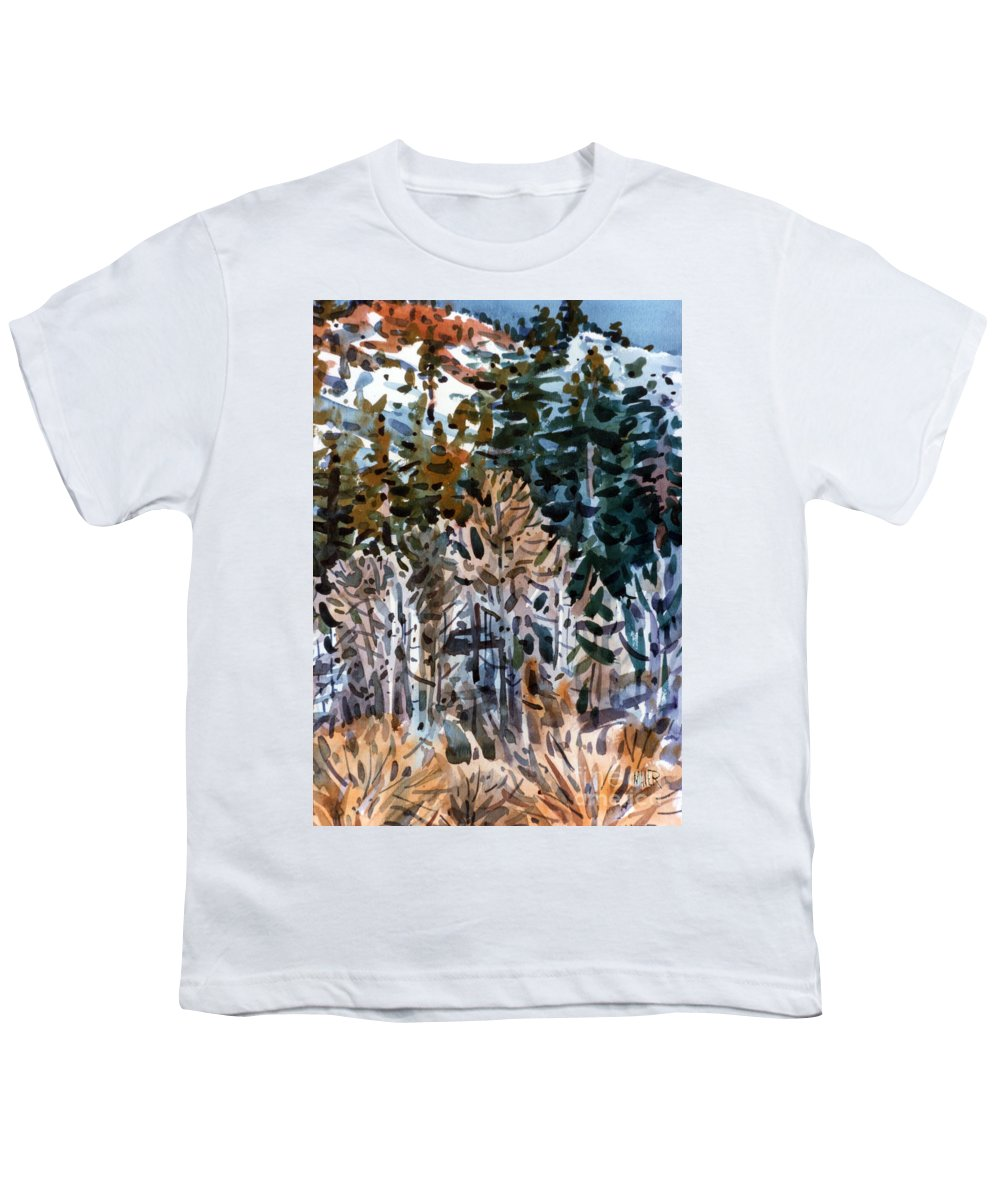 Walker River Youth T-Shirt featuring the painting Along The Walker River by Donald Maier
