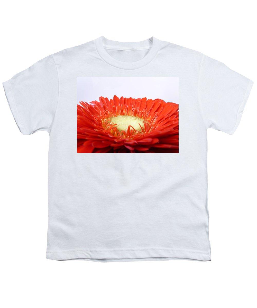 Gerbera Youth T-Shirt featuring the photograph Gerbera by Daniel Csoka