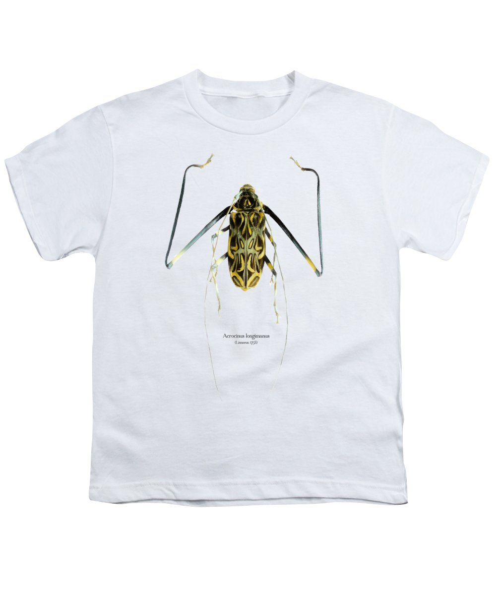 Nature Youth T-Shirt featuring the digital art Acrocinus II by Geronimo Martin Alonso