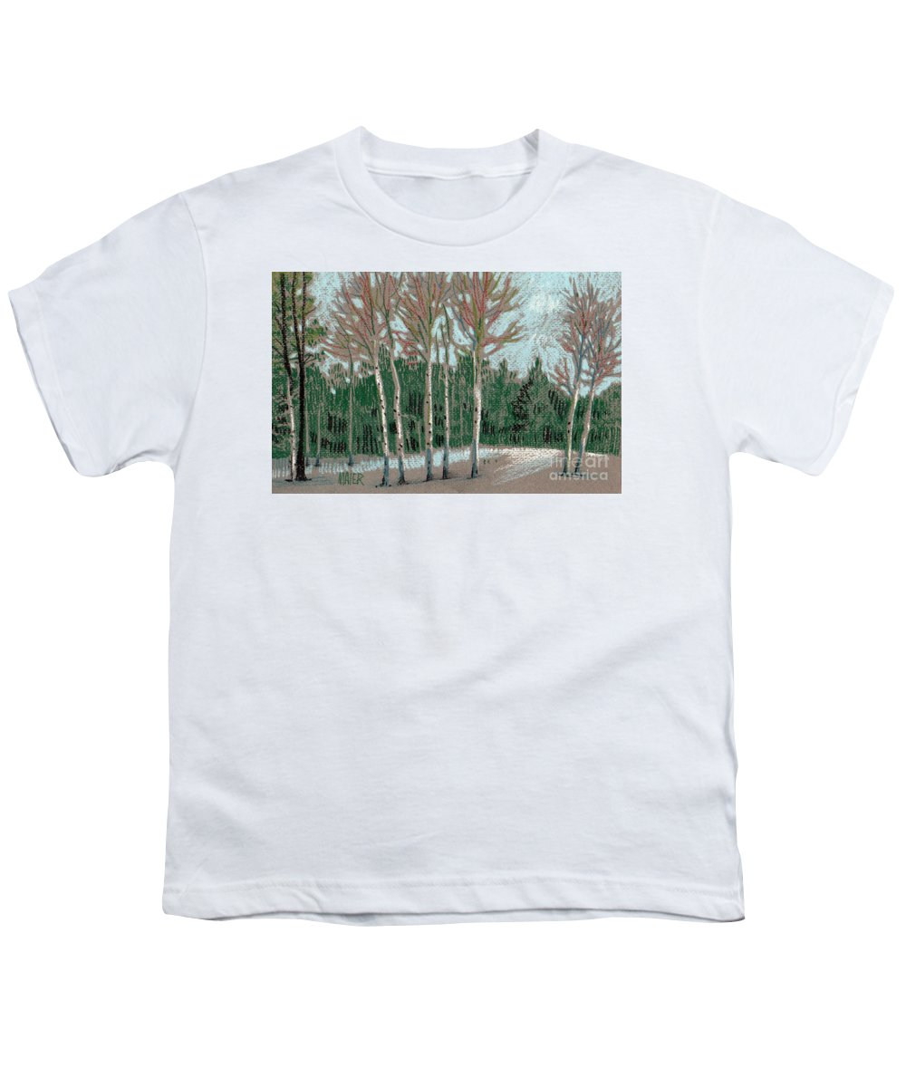 Aspens Youth T-Shirt featuring the drawing Aspen In The Snow by Donald Maier