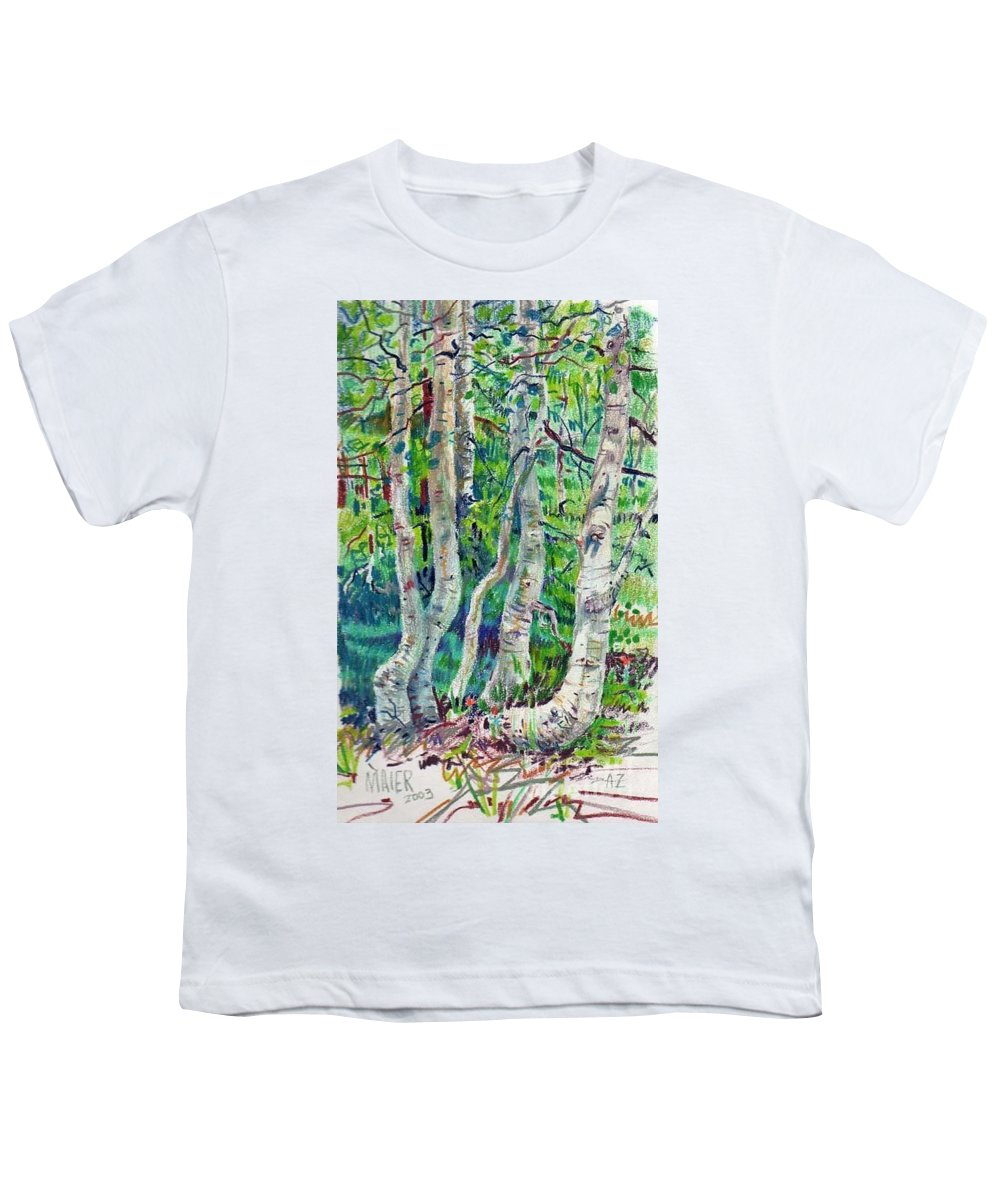 Aspens Youth T-Shirt featuring the drawing Aspens by Donald Maier