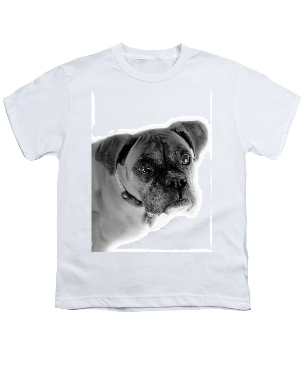Boxer Youth T-Shirt featuring the photograph Boxer Dog by Marilyn Hunt