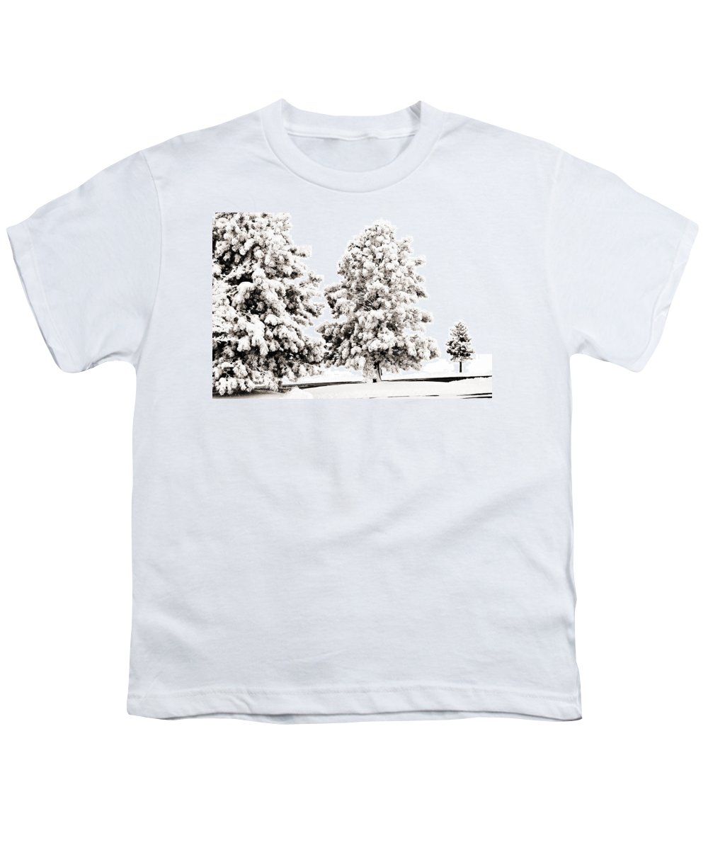 Trees Youth T-Shirt featuring the photograph Family Of Trees by Marilyn Hunt