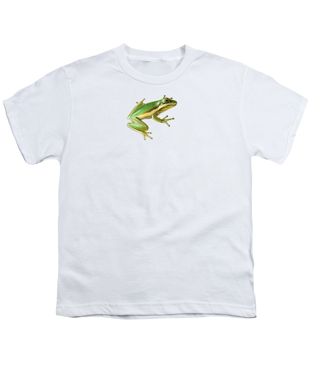 Frogs Youth T-Shirts