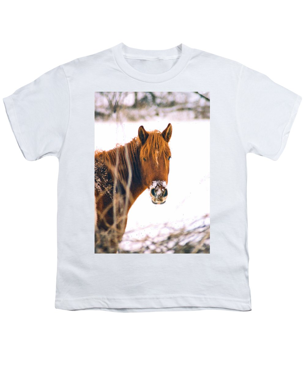 Horse Youth T-Shirt featuring the photograph Horse In Winter by Steve Karol