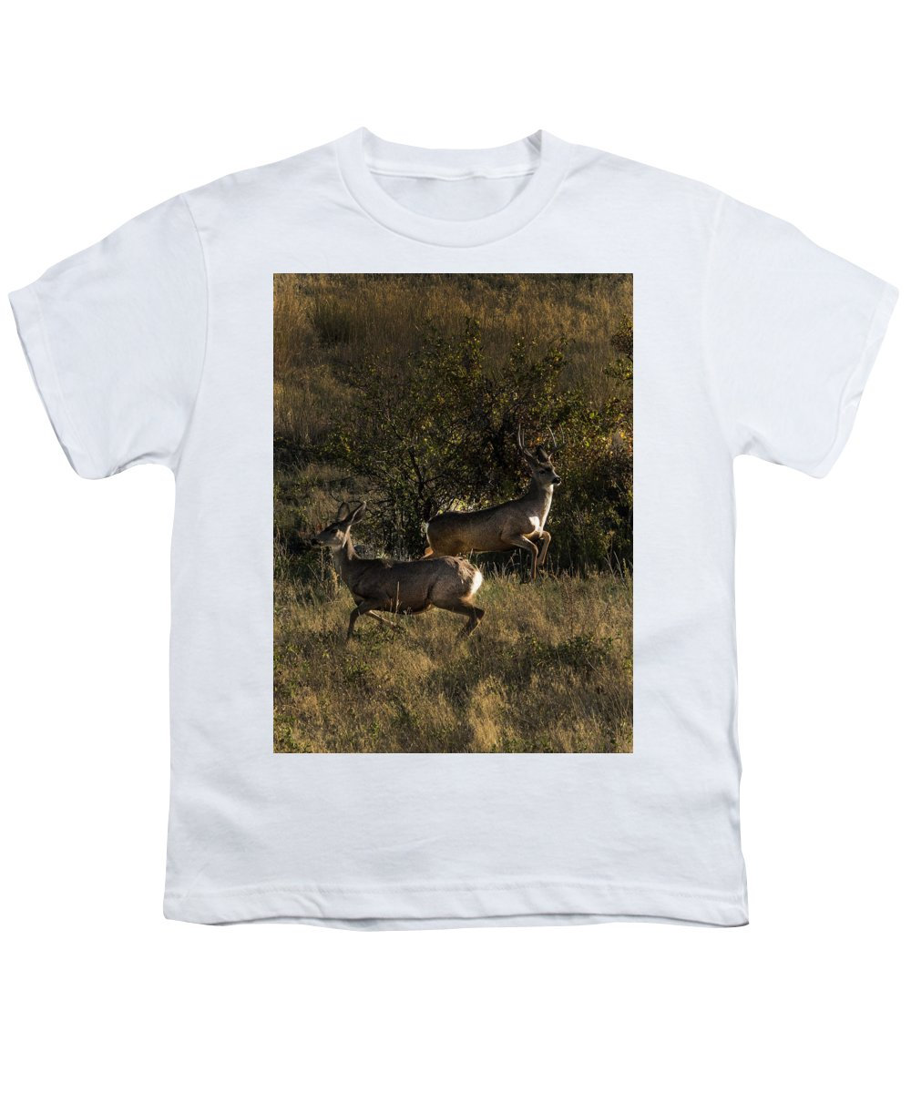 Deer Youth T-Shirt featuring the photograph Jumping deer by Roy Nierdieck