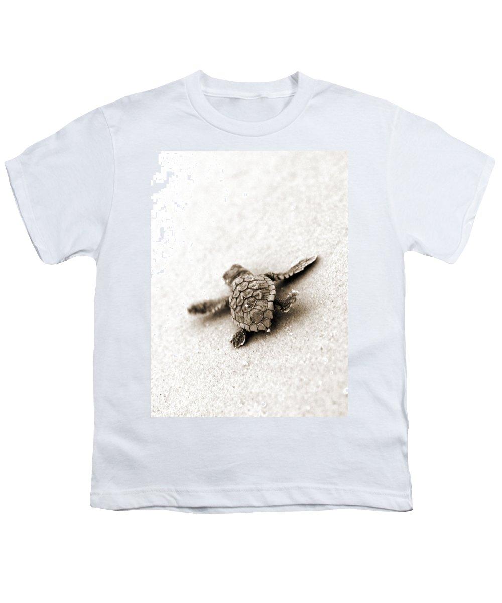 Loggerhead Turtle! Hilton Head Island Youth T-Shirt featuring the photograph Loggerhead by Michael Stothard